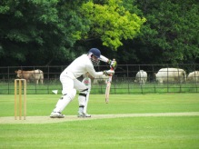 Kunal gives good support in an opening stand of 70