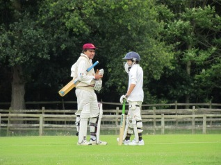 The Nayars - Father and son - confer mid-pitch