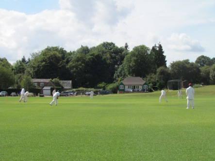 Harpsden ground