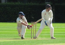 Tim sweeps on his way to 58* in 44 balls